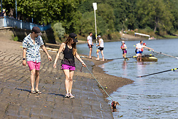 Licensed to London News Pictures. 17/07/2021. London, UK. Dog walkers enjoy the hot sunshine along the River Thames at Putney Embankment, southwest, London today as weather forecasters predict a very warm and dry Weekend with highs of over 32c in London and the south East with the warm weather lasting up to two weeks. Photo credit: Alex Lentati/LNP
