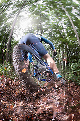 Mountain biker speeding on forest track, Bavaria, Germany