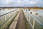 Nederland, Arnhem, 4-2-2013Dit gebied ten zuiden van de rijn, meinerswijk, wordt in de toekomst een groot natuur en recreatiegebied. Op de achtergrond de stad met hogeschool voor de kunsten Artez en de kantoren van Arcadis enFoto: Flip Franssen/Hollandse Hoogte
