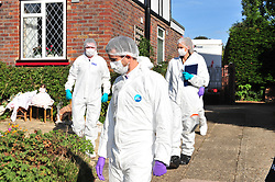 © Licensed to London News Pictures. 29/09/2018<br /> HADLOW, UK.<br /> Police forensics officers. <br /> A murder investigation has been launched in Hadlow,Kent after the deaths of two women at Carpenters Lane. A 28 year old man has been arrested on suspicion of murder after three people suffered serious injuries. Police forensic officers are at the scene inside two properties 26 and 24 Carpenters Lane.<br /> Photo credit: Grant Falvey/LNP