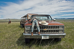 Andy Anderson, 4, sleeps while his parents try to get a cow into their trailer in their summer pastures in the Centennial Valley of Southwestern Montana in June 2012.  The age of the open range is gone and the era of large cattle drives  over. Today, very few ranches drive their cattle with horses, instead moving them by truck. Now, spurred by growing consumer concern over meat's environmental impact and concerned about the long-term viability of their livelihood, a cohort of ranchers is trying to apply the understanding gleaned from the science of ecology to livestock management.