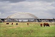 Nederland, Nijmegen, 3-2-2019 Na een vertraging van bijna een jaar is aannemer KWS in opdracht van Rijkswaterstaat begonnen met het groot onderhoud aan de oude, iconische Waalbrug . De brug wordt de komene maanden grondig gerenoveerd en opgeknapt. Het onderhoud is hard nodig want op veel plaatsen zijn dikke plakken roest onder meer van opspattend strooizout gevormd . Het bleek dat de oude verf chroom6 bevat waardoor de renovatie is uitgesteld vanwege extra veiligheidsmaatregelen. De brug is gebouwd in 1936 en was toen de langste boorbrug van Europa . Foto: Flip Franssen