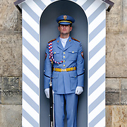 Guard at Prague Castle standing at attention