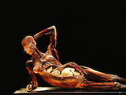 """Pregnant Woman,"" a piece from Gunther von Hagens' Body Worlds exhibits. Body Worlds is a traveling exhibit of real, plastinated human bodies and body parts. Von Hagens invented plastination as a way to preserve body tissue and is the creator of the Body Worlds exhibits.."