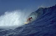 Surfing, Hawaii, USA<br />