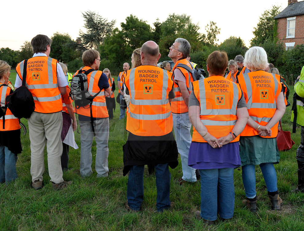 © Licensed to London News Pictures. 03/09/2013. Eldersfield, Gloucestershire, UK. Wounded Badger Patrol patrol in Gloucestershire gather for the evening patrol.  Around 100 people patrolled local roads and public footpaths looking for injured badgers from the badger cull which has now started in West Gloucestershire.  Police were also patrolling but there were no arrests.  03 September 2013.<br /> Photo credit : Simon Chapman/LNP