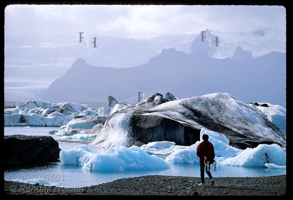 Man stands on shore of Jokulsarlon (Glacier Lagoon) where ice calved from Breidamerkurjokull glacier floats toward sea; SE Iceland.