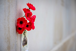 Poppies on the wall of remembrance at the Australian National Memorial at Villers-Bretonneux Military Cemetery near the Somme in northern France.  There are 2,144 Commonwealth servicemen of the First World War buried or commemorated in this cemetery, 605 of whom remain unidentified.<br /> <br /> (c) Andrew Wilson | Edinburgh Elite media