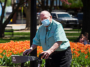 """03 MAY 2020 - PELLA, IOWA: A person wearing a mask to prevent the spread of Coronavirus walks through downtown Pella, Iowa. Pella is a small community in central Iowa. The town's economy is driven by tourism and the Tulip Festival, the largest tourist event of the year, has already by canceled for 2020 because of fears that the festival could become a COVID-19 (Coronavirus/SARS-CoV-2) """"Super Spreader"""". The Governor of Iowa reopened 77 of Iowa's 99 counties. The counties that were reopened have reported low incidences of Coronavirus. Marion County, where Pella is located, has reported 12 cases of Coronavirus. There have been 9,169 confirmed cases of Coronavirus in Iowa, including 1,476 cases in the Des Moines area, less than one hour away. Many people from Des Moines drove to Pella this weekend to see the tulips for which the town is famous.      PHOTO BY JACK KURTZ"""