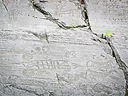 Parco Nazionale delle incisioni rupestri di Campo di Ponte in Valcamoonica, provincia di Brescia. Il carro dell'età del ferro sulla roccia 23