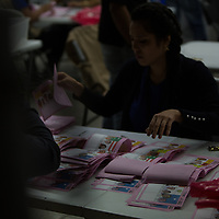 During a partial recount of votes in the Supreme Electoral Tribunal, TSE, workers counting the votes were overseen by international observers. Many irregularities in the electoral process were identified by the EU and EOA observer teams and the final declaration was more than two weeks coming, during which time the computer system was said to have crashed four or five times, including once for 24 hours. Controversially, each time the computer system came back on line the results had changed in favour of Juan Orlando Hernández.