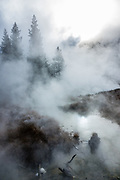 Dramatic steamy morning on Artists' Paint Pots Trail in Yellowstone National Park, Wyoming, USA.