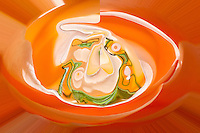 Shinig orange color light and shade with green fluid shape on orange background