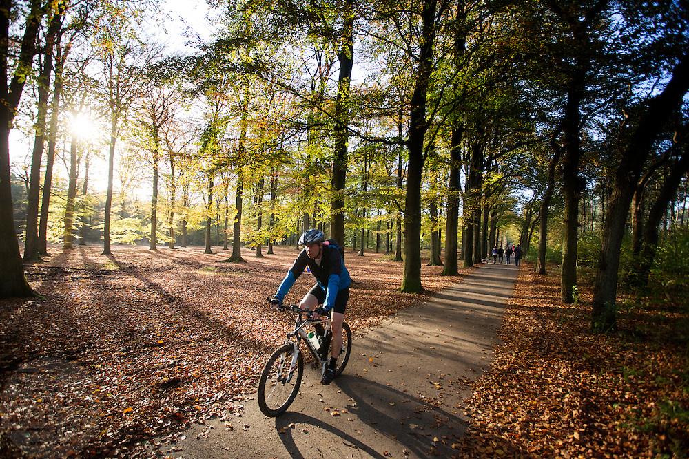 Bij Woudenberg geniet een mountainbiker van het mooie herfstweer.<br /> <br /> Near Woudenberg a cyclist enjoys the nice autumn weather.