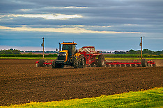 Crop & Field Royalty Free Stock Images