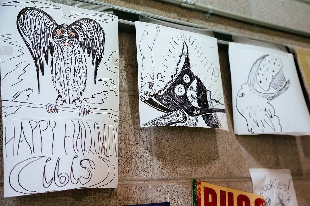 Random artwork and Ibis branding through out the production warehouse.