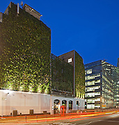 Living wall at Rubens at the Palace Hotel. Night. Dusk. London Victoria. Nova. Lighting by ACDC. living wall, grass, plants, vertical wall, london, hotel, victoria, england, uk