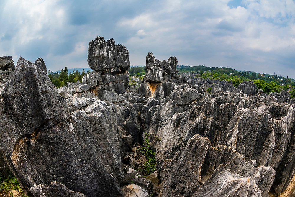 The Stone Forest, limestone formations at Shilin, Yunnan Province, China. Looking like stalagmites or petrified trees gave the formations the name. The Naigu Stone Forest and Suogeyi Village are a UNESCO World Heritage Site.