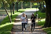 Drie meisjes rennen met de honden in het park.<br /> <br /> Three girls are running with their dogs in the park.