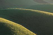 Green hills in spring, in the Tassajara Region, Contra Costa County, CALIFORNIA