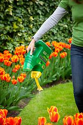 Applying a granular lawn feeder