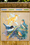 Painting of local birds, Riomaggiore, Cinque Terre, Liguria, Italy
