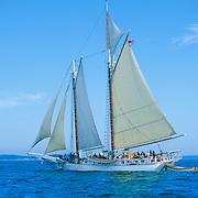 "The Schooner ""Isaac Evans"" sailing on Penobscot Bay off Rockland, Maine"