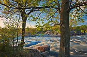 Trees and rock. The flow of water narrows between Lovesick Lake and Lower Buckhorn Lake on the west and Stoney Lake to the east creating Burleigh Falls. Kawartha Lakes. <br />