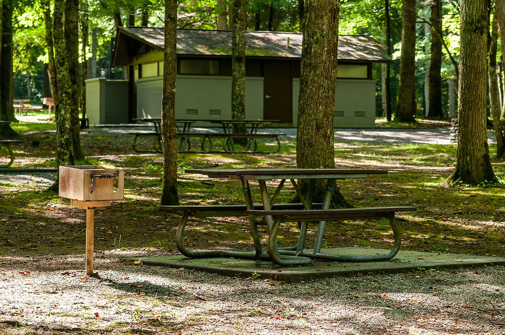 Collins Creek Picnic Area in Great Smoky Mountains National Park in Cherokee, North Carolina on Thursday, August 13, 2020. Copyright 2020 Jason Barnette