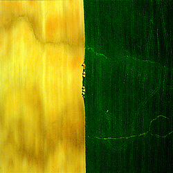 Aerial art abstract of a farm in Lancaster, PA<br />showing geometry of lines in the earth.