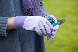 Mauve gloves