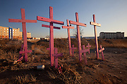 Pink crosses stand in a cotton field as a memorial to women murdered in Juarez, Mexico found in 2001, on January 16, 2009. Violence in Juarez, linked to the ongoing drug war has already claimed more than 100 people since the start of the year. More than 1600 people were killed in Juarez in 2008, making Juarez the most violent city in Mexico.    (Photo by Richard Ellis)