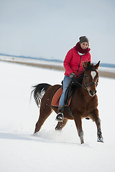 Young woman riding a horse in winter, Bavaria, Germany