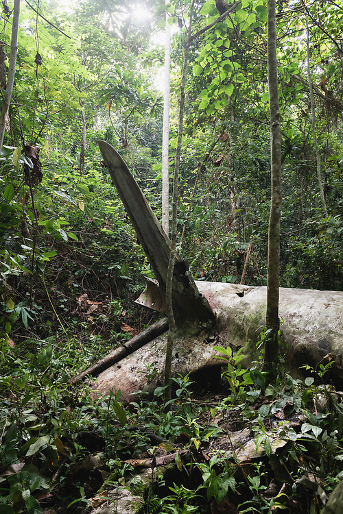 On April 5, 1944, on the return from an attack on Japanese forces in Hollandia, the A-20 Havoc piloted by 2nd Lt. Thomas E. Freeman crashed into the jungle near the Clay River in what is now Papua New Guinea. The remains of the two crew -- also on board was the gunner, Cpl Ralph A. McKendrick -- were recovered in 1967. <br /> <br /> (June 21, 2019)