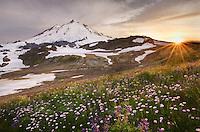 Sunset over Mount Baker, 10,781 ft (3,286 m), Mount Baker Wilderness Washington