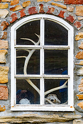 Window With Antlers Inside
