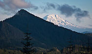 Griffin Mountain in the Tahoma State Forest with Mount Adams in the Gifford Pinchot National Forest in the background. Cascade Mountain Range, Washington state, USA