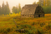 Old barn and fog at sunrise<br />Near Golden <br />British Columbia<br />Canada