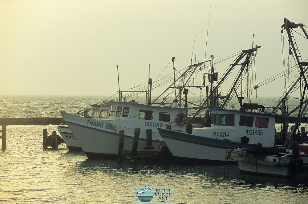 """Shrimp Boats in harbor along the Texas Gulf Coast """"Thanh Son"""" """"My Anh"""""""