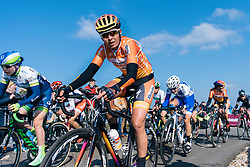 Nikki Harris tops the VAMberg for the second time- Ronde van Drenthe 2016, a 138km road race starting and finishing in Hoogeveen, on March 12, 2016 in Drenthe, Netherlands.