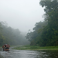 A primitive, thatched-roofed tourist boat travels down the Yanayacu River in Peru's Amazon Jungle.