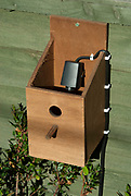 Bird Box with camera installed to view nesting birds, in garden, box open to see camera, UK