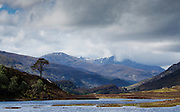 Telephoto landscape of the lower reaches of Glen Strathfarrar, with the majestic Caledonian pine in the midground.