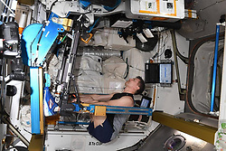 March 22, 2019 - cosmonaut Oleg Kononenko Morning on the International space station always starts from the charging equipment. Basically, it's a treadmill, Ergometer — on the Russian segment and power simulator ARED us on!!!  Roscosmos via globallookpress.com (Credit Image: © Russian Look via ZUMA Wire)