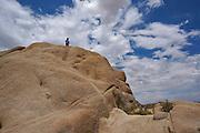 Rock Climbing in Joshua Tree National Park California