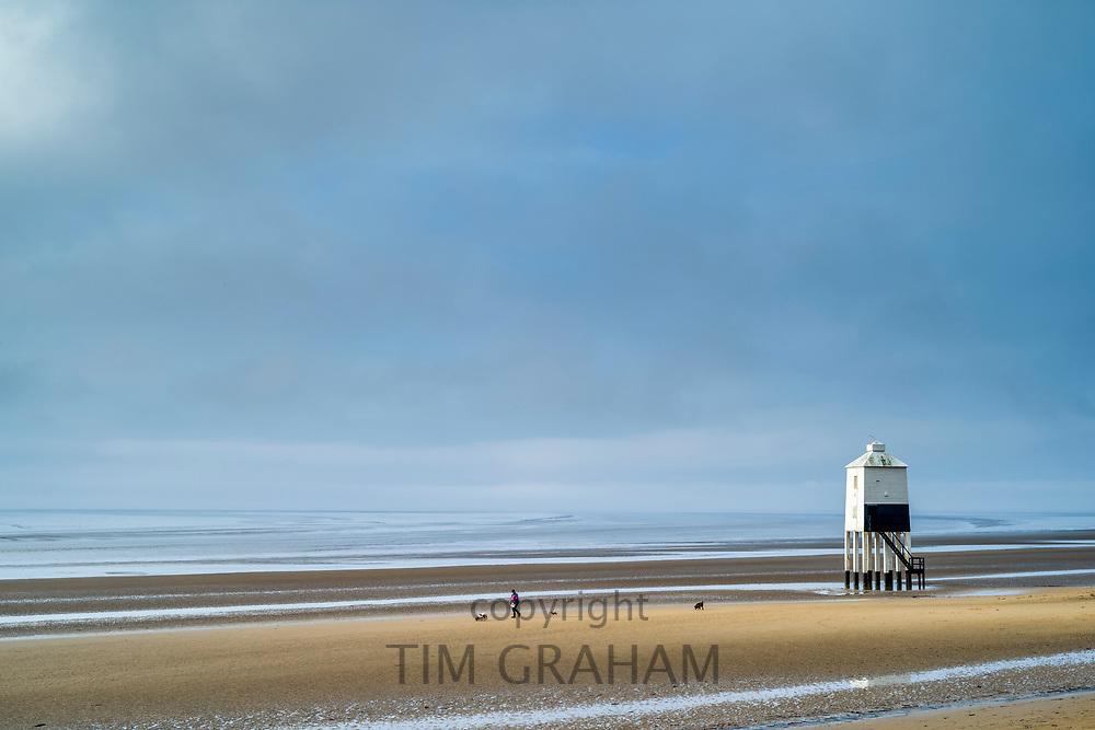 Lone figure walking dogs along sandy beach enjoying the solitude by the Bristol Channel at Burnham-on-Sea, Somerset, UK