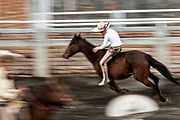 Young Juan Franco, from the legendary Franco family of Charro champions, successfully leaps bareback from one horse to another in an event called the The Pass of Death during a family practice session in the Jalisco Highlands town of Capilla de Guadalupe, Mexico.  The event involves riding bareback and then leaping from one horse to the bare back of a loose, unbroken horse without reins and ride it until it stops bucking.