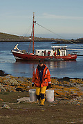 Renee carrying supplies ashore after being landed by boat (The Condor) onto Steeple Jason Island for 2 weeks of photography.<br /> Steeple Jason. FALKLAND ISLANDS.<br /> The Jasons (Grand and Steeple) are a chain of islands 40 miles (64km) north and west off West Falkland towards Patagonia. Steeple is 6 by 1 mile (10Km by 1.6km) in size. From the coast the land rises steeply to a rocky ridge running along the length. <br /> This island has the largest Black-browed Albatross colony in the world with 113,000. The island is owned by WCS (Wildlife Conservation Society)