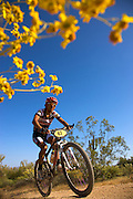 The 2008 Pro Mens Kenda Cross Country race as part of the National Mountain Bike Series Races at McDowell Mountain Regional Park, near Fountain Hills, outside of Phoenix, Arizona.