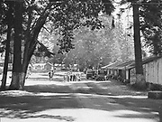 5576Camp grounds at the E. Clemens Horst hop ranch near Independence, Oregon. September 1, 1942.